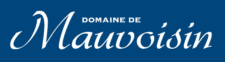 Logo bleu 1
